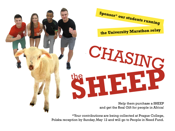 Students chase sheep for good cause