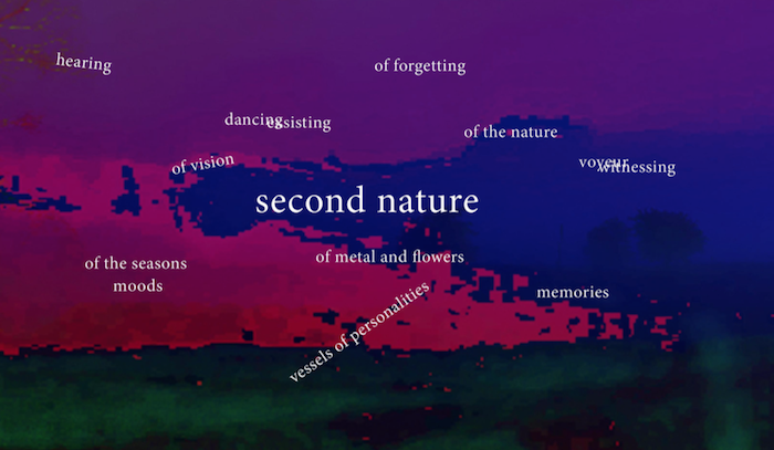 Second Nature exhibition