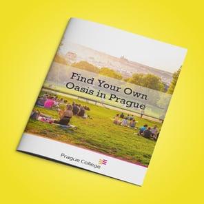 mockup-parks-brochure
