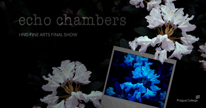 HND Fine Art exhibition: 'echo chambers'